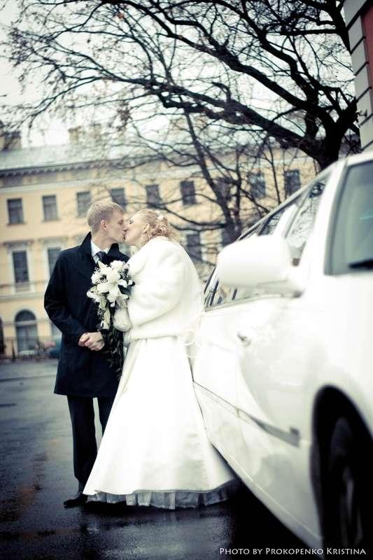 Фото 1063667 в коллекции Wedding - Свадебный фотограф Толстикова Кристина