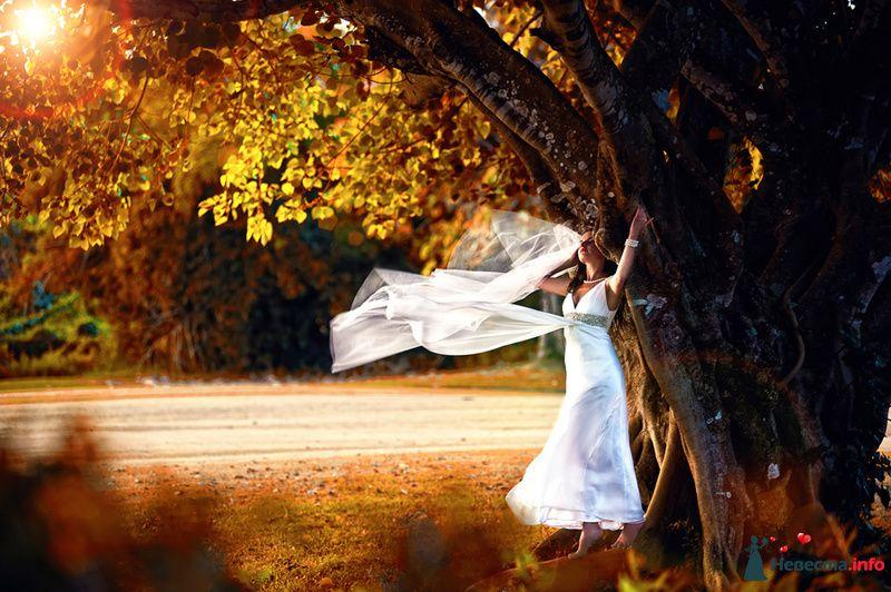 Фото 115303 в коллекции Свадьба на Бали - Ваш фотограф на Бали - Максим Коробейников