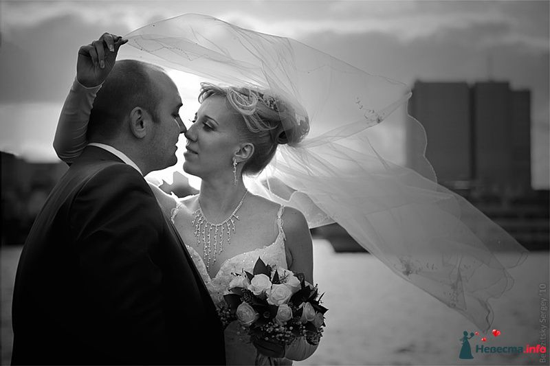 Фото 129979 в коллекции Свадебные фото