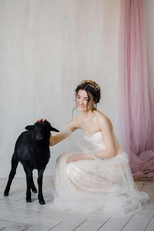 Фото 17454190 в коллекции Портфолио - Фотограф Натали Малова