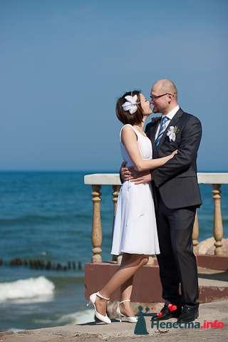 Свадебная фотосъёмка в Калининграде - фото 116978 Фотограф Татьяна Тельминова