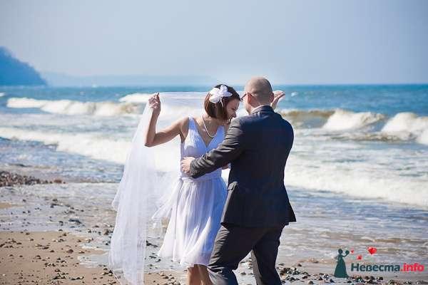 Свадебная фотосъёмка в Калининграде - фото 116980 Фотограф Татьяна Тельминова