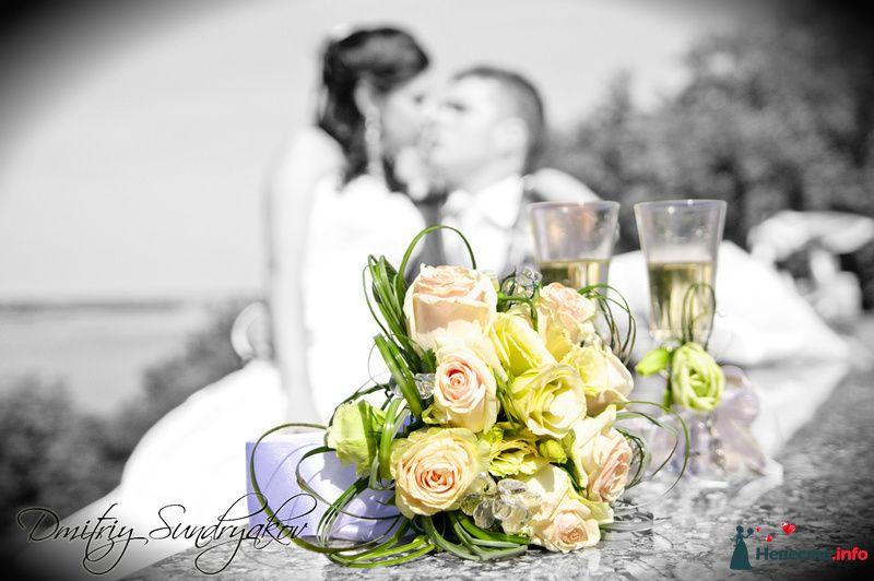 Фото 141177 в коллекции Свадьба - Фотограф Дмитрий Сундряков