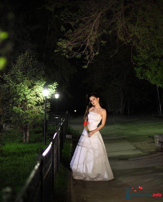 Фото 125819 в коллекции Wedding - Свадебный фотограф Денис Касецкий