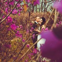 Весна, любовь, цветы, запах цветов, свадьба