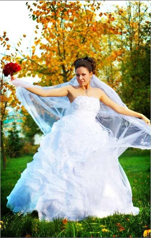 """Фото 4871417 в коллекции Свадьба в Суздале - Фото-видеостудия """"Вега"""""""
