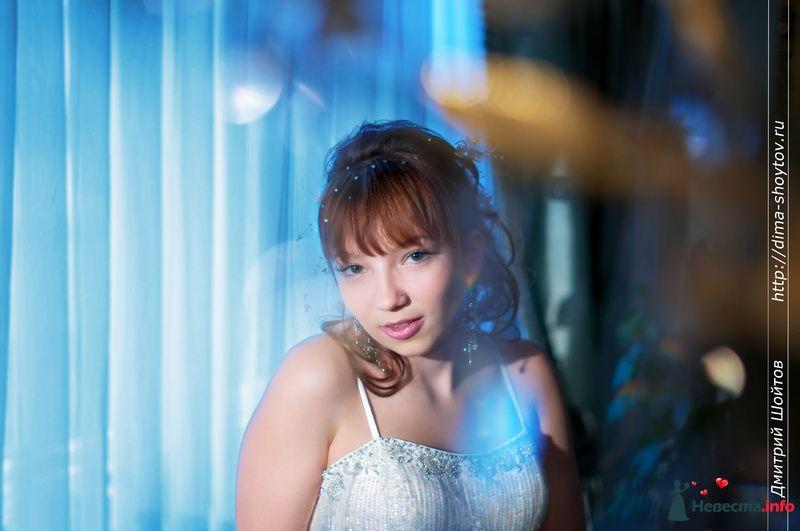 Фото 119669 в коллекции фотограф Дмитрий Шойтов - Дмитрий Шойтов