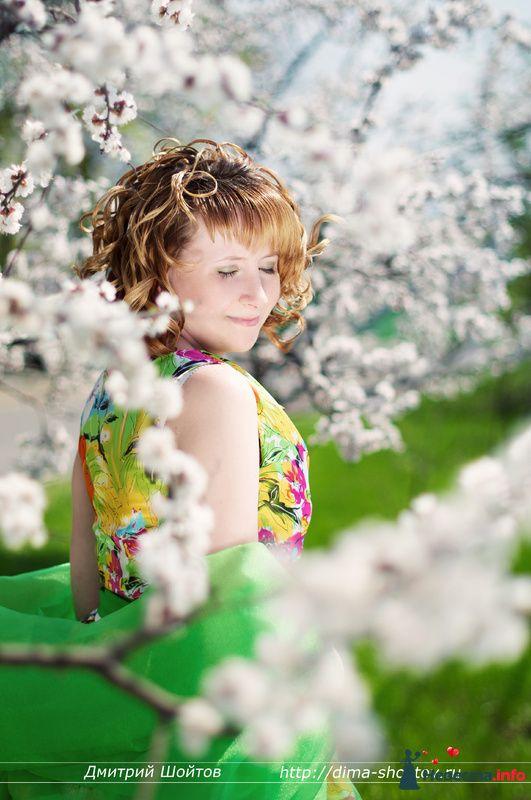 Фото 119698 в коллекции фотограф Дмитрий Шойтов - Дмитрий Шойтов