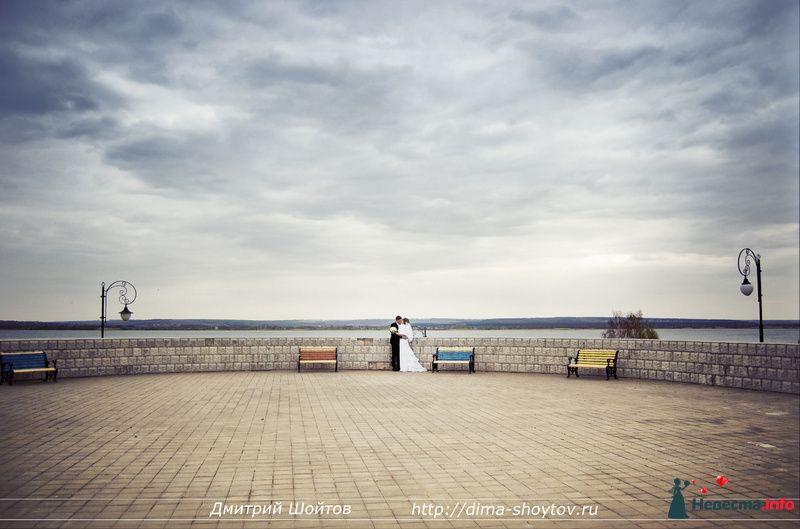 Фото 119719 в коллекции фотограф Дмитрий Шойтов - Дмитрий Шойтов