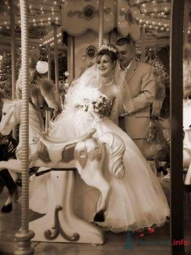 """Фото 10347 в коллекции Мои фотографии - Мастерская """"Белая Сирень"""" - фотоуслуги"""