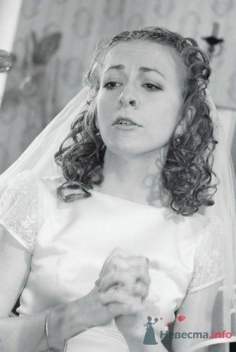 """Фото 10352 в коллекции Мои фотографии - Мастерская """"Белая Сирень"""" - фотоуслуги"""