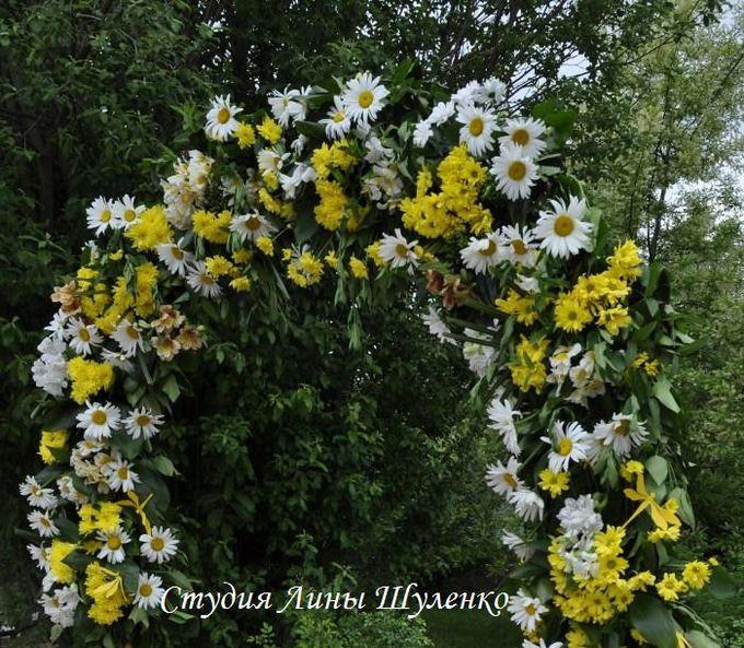 Выездная регистрация в Симферополе.бело-желтая свадьба в Крыму. Свадебная арка из ромашек,хризантем,гербер,альстромерий.