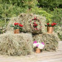 Инсталляция на свадьбу в деревенском стиле