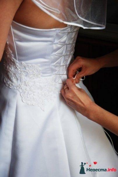 Фото 126105 в коллекции свадьба