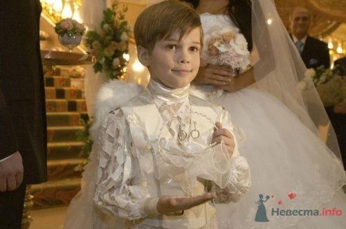Дети-ангелочки - фото 12281 Arlecchino - cвадебное агентство