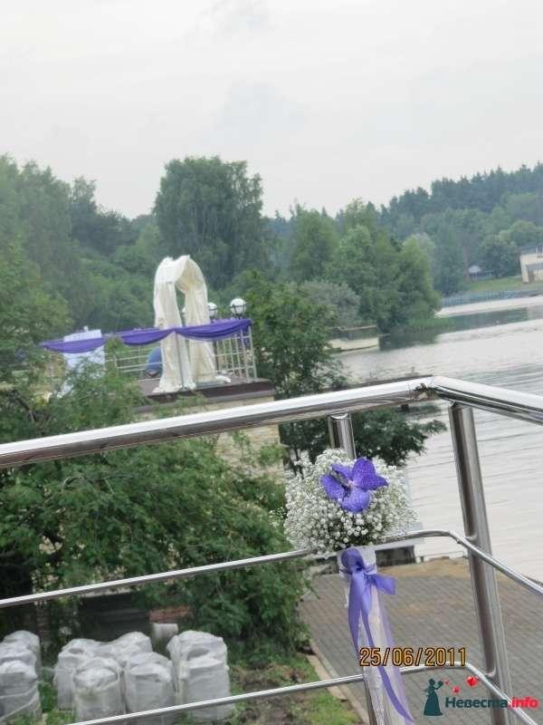 """Фото 306389 в коллекции Свадебное оформление - Агентство """"Марианна"""" - организация мероприятий"""