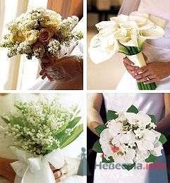Фото 10822 в коллекции Мир свадебных услуг - Невеста01