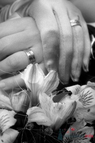 Фото 15801 в коллекции Свадебные Фото - Студия Творческой Фотографии