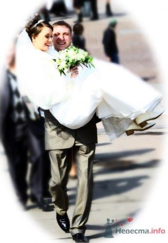 Фото 16095 в коллекции Свадебные Фото - Студия Творческой Фотографии