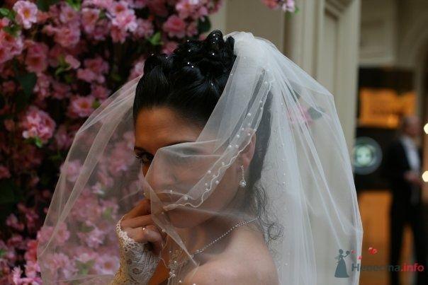 Фото 59447 в коллекции наша Свадьба или как Это было... - Lina