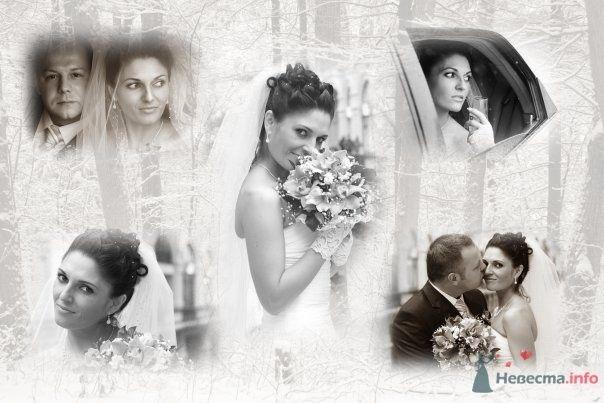 Фото 59448 в коллекции наша Свадьба или как Это было...