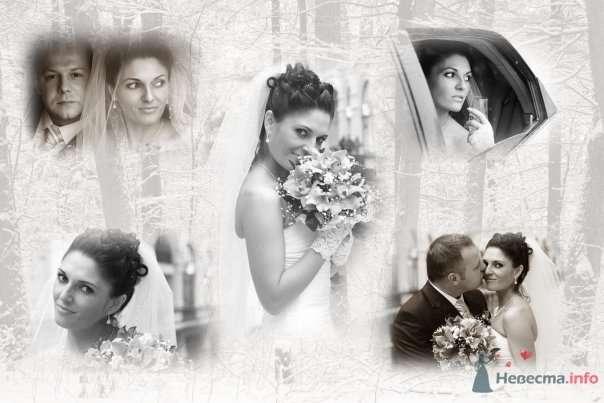 Фото 59448 в коллекции наша Свадьба или как Это было... - Lina
