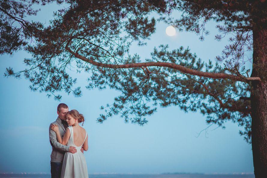 Фото 2574449 в коллекции Романтика белых ночей - Света Кассина - фотограф