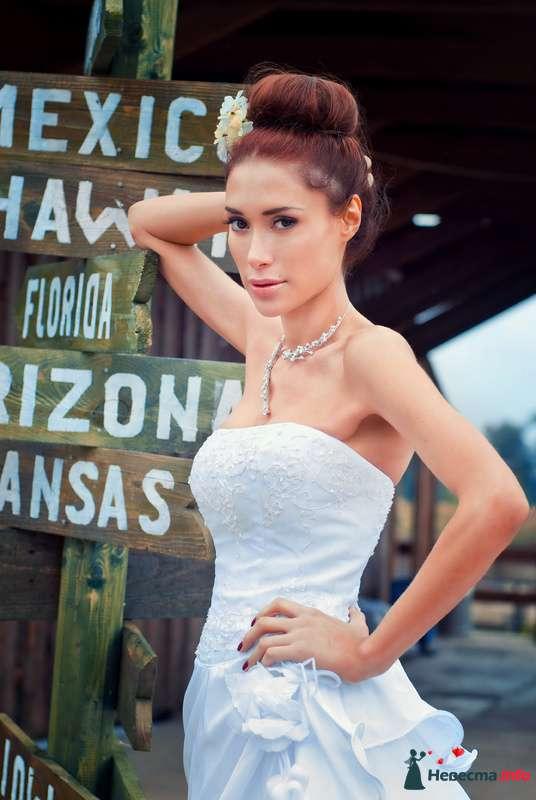 Фото 127547 в коллекции Свадьбы - Свадебный фотограф Трейго Любовь