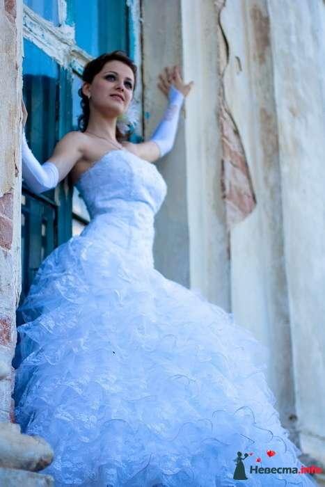 Фото 127227 в коллекции Свадебное портфолио - Анна Калашникова