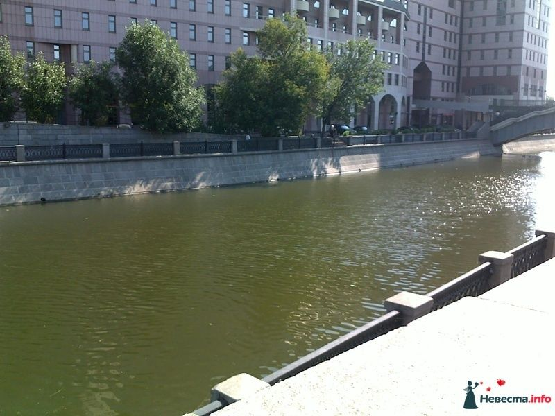 Фото 128345 в коллекции Прогулка - Sentyabrina