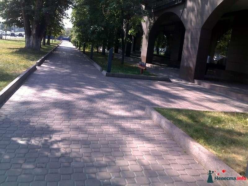 Фото 128351 в коллекции Прогулка - Sentyabrina