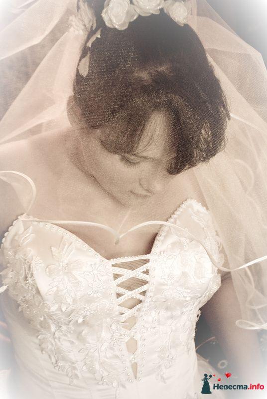 Фото 131585 в коллекции Свадебный - Фотограф Виктория Боголюбова