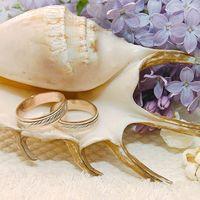 Морская ракушка с кольцами