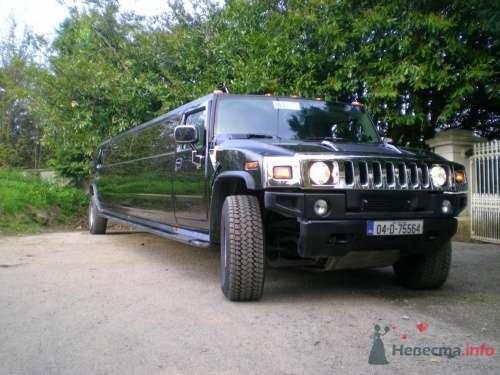 Хаммер черный - фото 12358 Лимузин Престиж - пассажирские перевозки