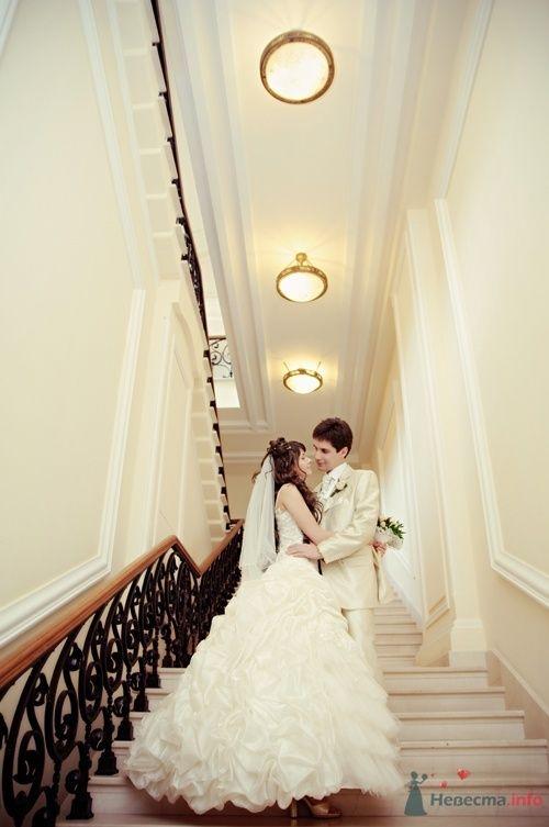 Фото 40100 в коллекции Wedding by Svetlana Alexseeva - Rainbow