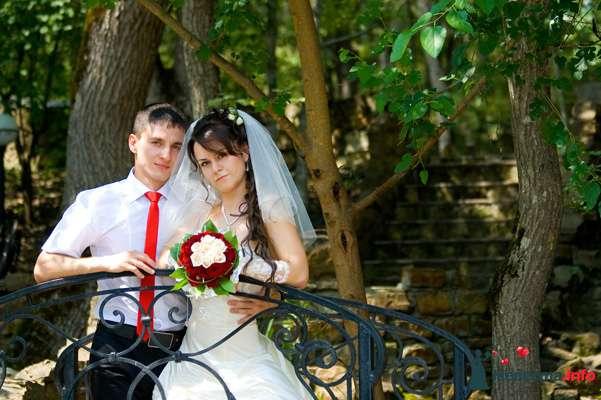 Фото 131025 в коллекции Момент - Свадебный фотограф - Александра-Ал