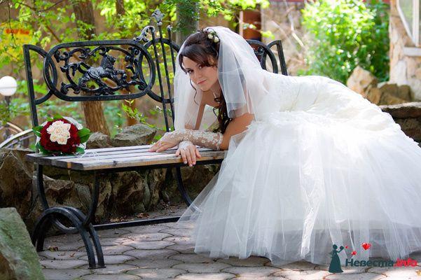 Фото 131030 в коллекции Момент - Свадебный фотограф - Александра-Ал
