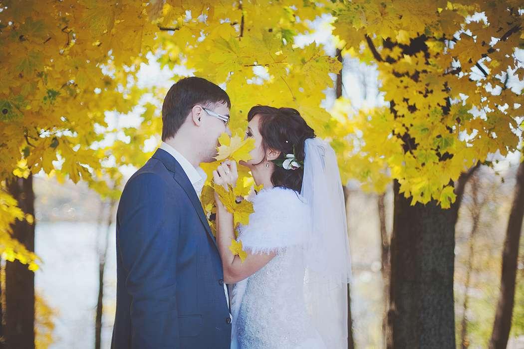 Фото 1771145 в коллекции Свадебные фотографии - Фотограф Анна Кладова