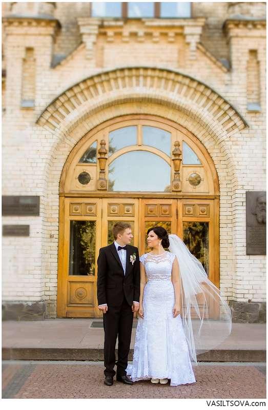 Фото 4850183 в коллекции Портфолио - Фотограф Валерия Васильцова
