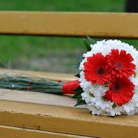 Букет невесты из красных гербер и белых ромашек