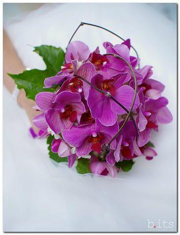 Фото 2689323 в коллекции Мои фотографии - Галерея цветов - Свадебное оформление