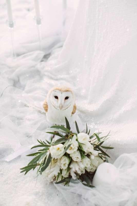"""Фото 9569592 в коллекции Портфолио - Студия свадебной режиссуры """"Make a wish"""""""