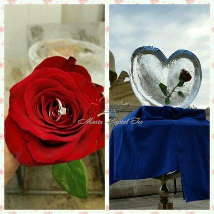 Ледяное сердце с розами внутри