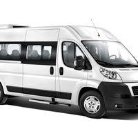 Автобусы от Transelite