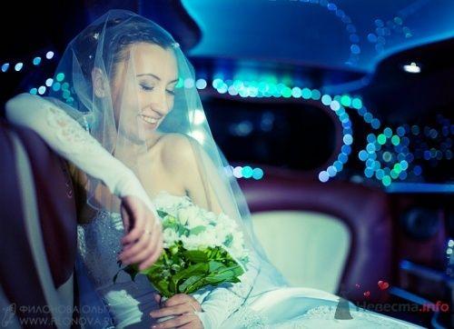 Свадебная фотография - фото 11823 Фотограф Филонова Ольга