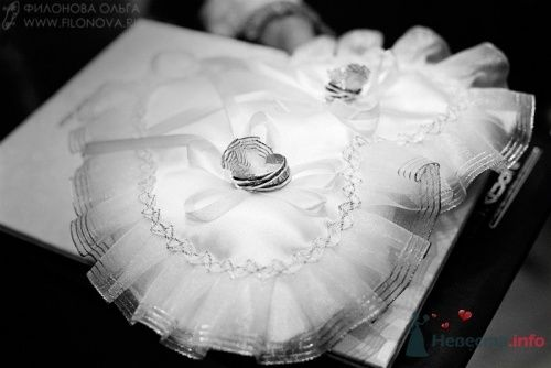 Свадебная фотография - фото 19208 Фотограф Филонова Ольга