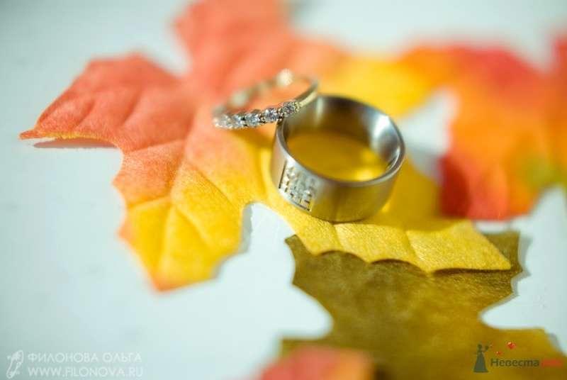 Обручальные кольца с драгоценными камнями  на фоне желтых листиков. - фото 65533 Фотограф Филонова Ольга