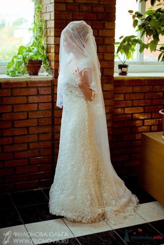 Фото 65535 в коллекции Свадьба Кристофера и Марины - Фотограф Филонова Ольга