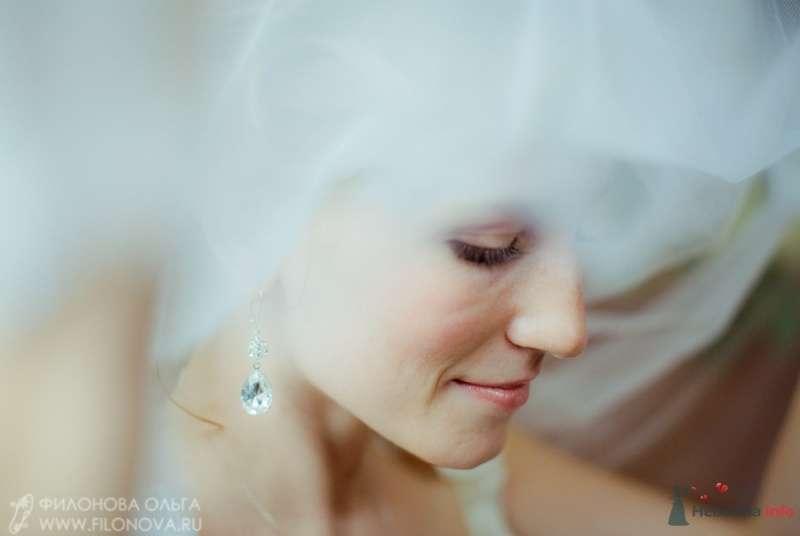 Фото 65537 в коллекции Свадьба Кристофера и Марины - Фотограф Филонова Ольга