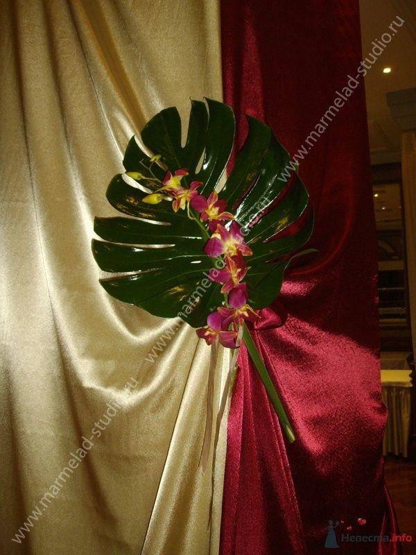 Фото 25797 в коллекции Оформление свадьбы тканями